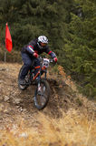 Downhill. Mountain biker on downhill race in forest Stock Photography