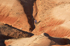 Downhill. In canyon Stock Images