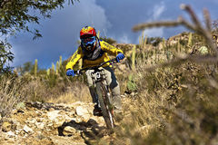 Downhill bike rider  riding down the trail Royalty Free Stock Photos