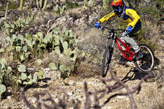 Downhill bike rider  riding down Stock Image
