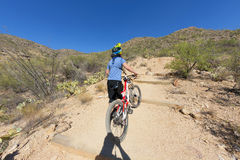 Downhill bike rider Royalty Free Stock Images