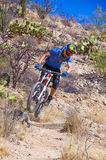 Downhill bike rider Royalty Free Stock Photography