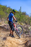 Downhill bike rider Royalty Free Stock Photos