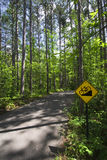 Downhill bike sign in Itasca State Park, Northern Minnesota, USA Stock Photo