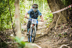 Downhill Bike Sports Stock Images