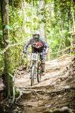 Downhill Bike Sports Royalty Free Stock Image