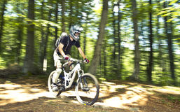 Downhill biker Royalty Free Stock Image