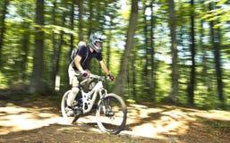Downhill biker Royalty Free Stock Image