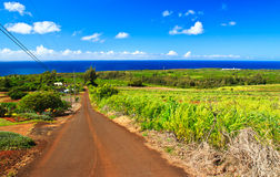 Downhill country road, Kauai Hawaii Stock Photos