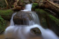 Downhill. Creek located in the forest of Sintra, Portugal Stock Photos