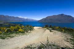 Downhill mountain bike track in Queenstown Stock Images