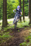 Downhill mountain biker in a forest near Kronberg, Germany Royalty Free Stock Image