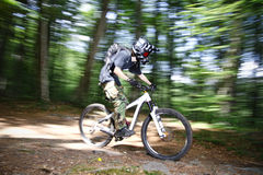 Downhill mountain bikers Stock Image