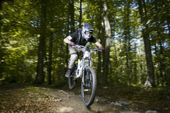 Downhill mountain bikers. In nature Stock Images