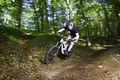 Downhill mountain bikers. In nature Royalty Free Stock Images