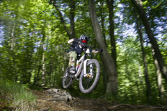 Downhill mountain bikers. In nature Royalty Free Stock Photo