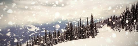 Downhill of mountain coated of snow Stock Photography