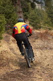 On downhill race. Mountain biker on downhill race in forest Royalty Free Stock Photos