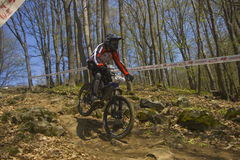 DownHill Race. Down Hill race in Hungary Royalty Free Stock Photos