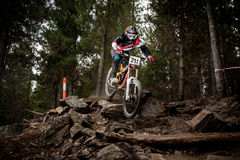 Downhill racer Stock Photography