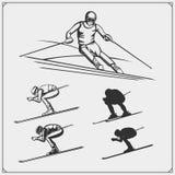 Downhill and slalom ski racer illustration. Vector Stock Image