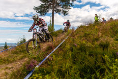Downhill SM 2012 Royalty Free Stock Photo