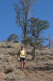 Downhill trail running Stock Photo