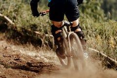 Downhill xtreme rider Royalty Free Stock Image