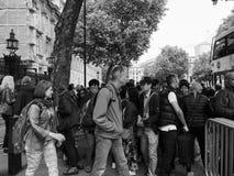 Downing Street em Londres preto e branco Fotos de Stock Royalty Free