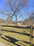 Downingtown Pensilvânia Kerr Park Fotografia de Stock