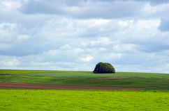 Downland Photos libres de droits