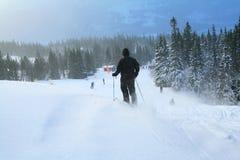 Downlill Ski fahrende 2 Stockfotos
