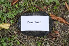 Download. A bad internet symbol. Low download speed. Slow internet. Ordinary river tortoise of temperate latitudes. The tortoise i Royalty Free Stock Photos