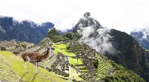 Machu Picchu, Peru; UNESCO World Heritage Site. One of the New Seven Wonders of the world Royalty Free Stock Images