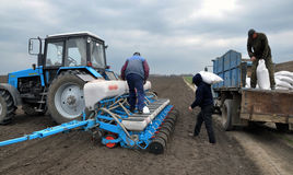 Downloads tractor sowing fertilizers Stock Photos