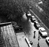 Downpour Stock Images