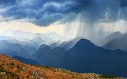 downpour στοκ εικόνες