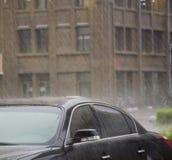downpour Fotografie Stock