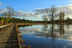 Boardwalk, completely flooded field, trees, and reflections stock images