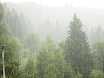 Downpour in the mountains. Downpour in the Carpathian Mountains royalty free stock photography
