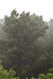Downpour Stock Photo