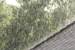Downpour scenery. With roof and vegetation Stock Photos