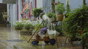 Downpour in small historic shopping area with flowerpots stock footage