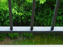 Downpour viewed through steel railing pickets with lush green background. Pouring rain or downpour viewed from a balcony through steel railing pickets with lush royalty free stock images