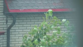 Downspout en gietend water op het hellende dak in de regen stock video