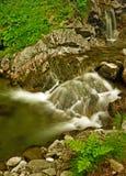 downstream Royaltyfria Bilder