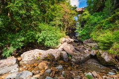 Downstream of Ashgill Force Royalty Free Stock Images