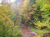 Downstream West Virginia Big Creek fall afternoon Royalty Free Stock Images