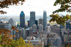 Downtime Montreal in the Fall. Royalty Free Stock Photos