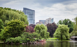 Downtown Boston from the Boston Commons. Boston Commons is a very nice spot in the heart of Boston. A green oasis in the vibrant hectic citylife Royalty Free Stock Photo
